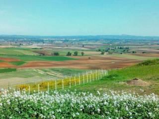 Foto - Terreno edificabile residenziale a Tuscania