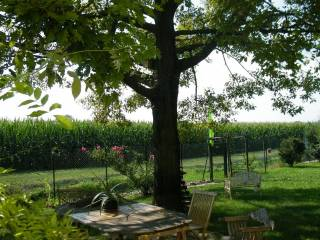 Foto - Villa unifamiliare via Vanzo Vecchio, Camisano Vicentino