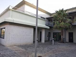 Immobile Affitto San Vincenzo