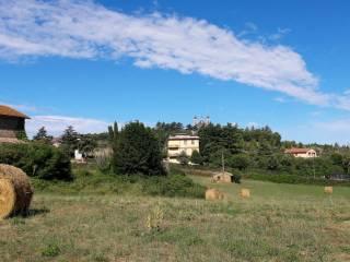 Foto - Casa colonica via San Vincenzo, Bassano Romano