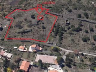 Foto - Terreno agricolo in Affitto a Nicolosi