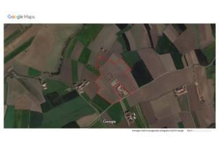 Foto - Terreno agricolo in Vendita a Carignano