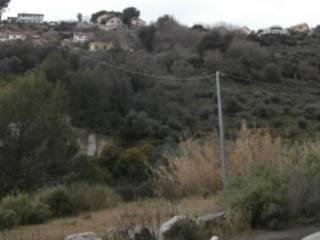 Foto - Terreno agricolo in Vendita a San Lorenzo al Mare