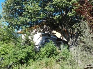 Foto - Terreno agricolo in Vendita a Soriano nel Cimino
