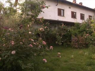 Foto - Rustico / Casale via Castello 21, Cozzo