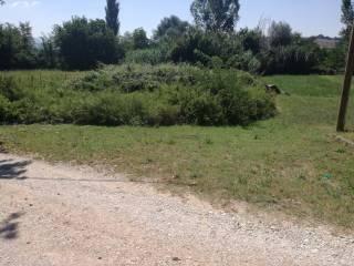 Foto - Terreno agricolo in Vendita a Acquasparta