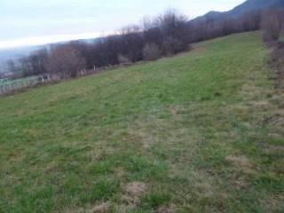 Foto - Terreno agricolo in Vendita a Envie