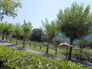 Foto - Terreno edificabile residenziale a Ranzanico