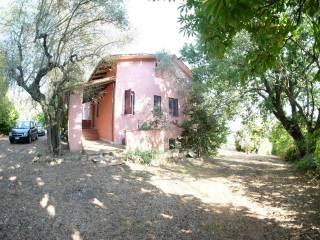 Foto - Villa via Colleselva, Poggio Somavilla, Collevecchio