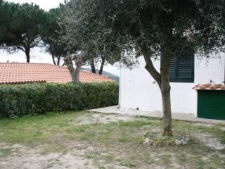 Foto - Villa, buono stato, 70 mq, Capoliveri