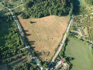 Foto - Terreno edificabile commerciale a Montelibretti