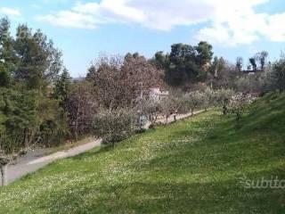 Foto - Terreno edificabile residenziale a Ascoli Piceno