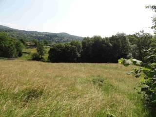Foto - Terreno edificabile residenziale a Donato