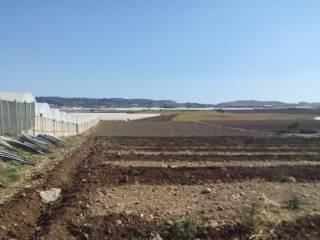 Foto - Terreno agricolo in Vendita a Licata