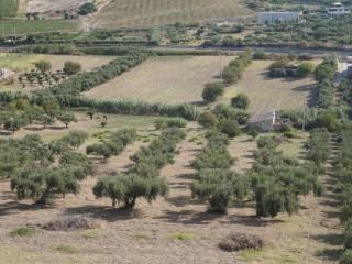 Foto - Terreno agricolo in Vendita a Realmonte