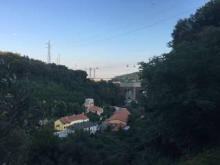 Foto - Terreno agricolo in Vendita a Savona