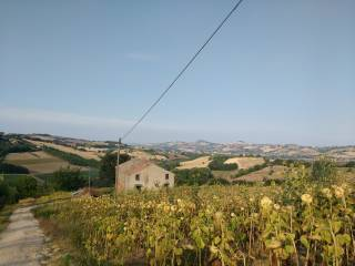 Foto - Rustico / Casale via San Severino, Rapagnano