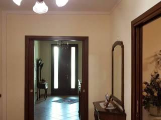 Foto - Villa, ottimo stato, 230 mq, Salina, Pomponesco