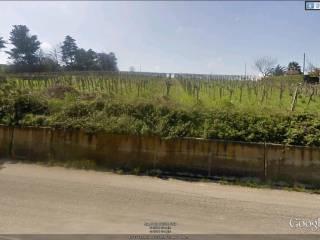 Foto - Terreno edificabile residenziale a Petacciato