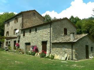 Foto - Rustico / Casale Località Montelabreve, Badia Tedalda