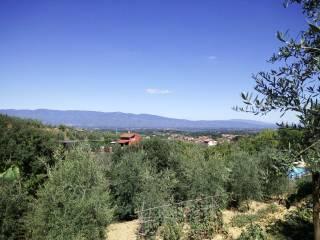 Foto - Terreno agricolo in Vendita a Montevarchi