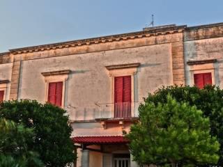 Foto - Appartamento Strada Statale Adriatica, Pezze di Greco, Pozzo Faceto, Montalbano, Fasano