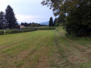 Foto - Terreno agricolo in Vendita a Valmorea