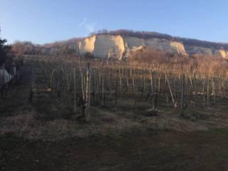 Foto - Terreno agricolo in Vendita a Lugagnano Val d'Arda