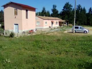 Foto - Villa, buono stato, 125 mq, Bivio Bonacci, Soveria Mannelli