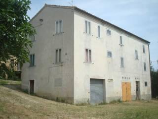 Foto - Rustico / Casale San Bernardino, Castignano