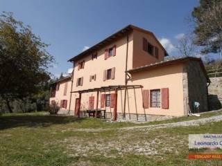 Foto - Rustico / Casale Colline del Montalbano, Lamporecchio