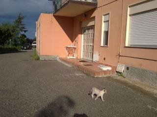 Foto - Loft / Open Space via Trieste 60, Patti