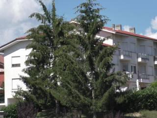 Foto - Bilocale Località Bricco 1, Bossolasco