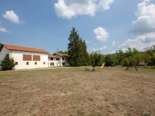 Foto - Rustico / Casale, ottimo stato, 690 mq, Miogliola, Pareto