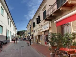 Attività / Licenza Affitto Campo nell'Elba