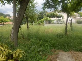 Foto - Villa via Marotta, Montefusco
