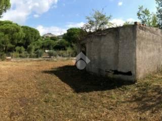 Foto - Rustico / Casale, da ristrutturare, 50 mq, Montecelio, Guidonia Montecelio