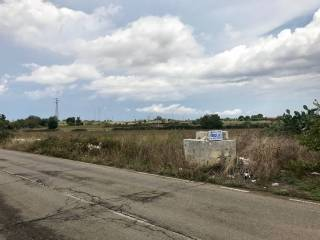 Foto - Terreno agricolo in Vendita a Martano
