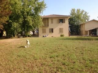 Foto - Villa Località Montanaro, San Giorgio Piacentino
