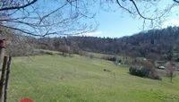 Foto - Terreno agricolo in Vendita a Vaglia