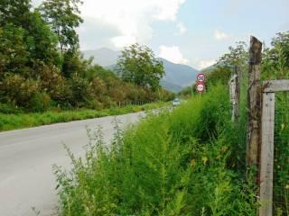 Foto - Terreno agricolo in Vendita a Mugnano del Cardinale