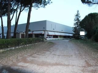Immobile Vendita Torrita di Siena