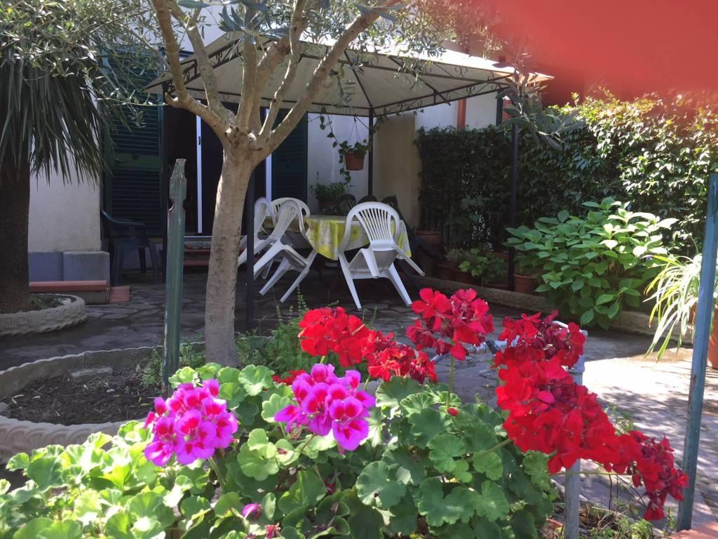 foto  Villetta a schiera 3 locali, buono stato, Collesalvetti
