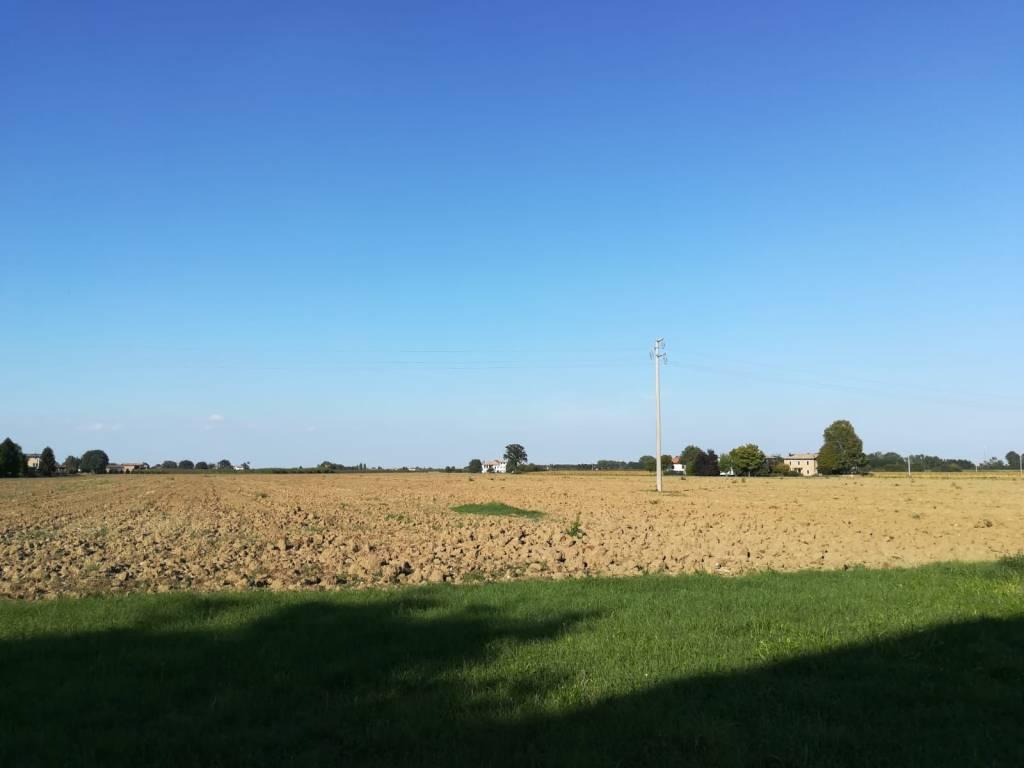foto  Terreno agricolo in Vendita a Valsamoggia