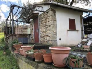 Foto - Terreno edificabile residenziale a Roccastrada