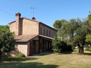 Foto - Rustico / Casale via Montebello, Montebello, Terre Roveresche