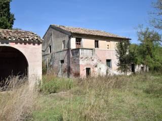 Foto - Rustico / Casale via Pino Amato 22, Villa San Filippo, Monte San Giusto