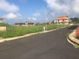 Foto - Terreno edificabile residenziale a Curinga