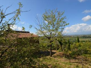 Foto - Rustico / Casale, da ristrutturare, 95 mq, Montebuono
