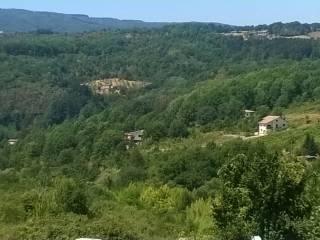 Foto - Terreno edificabile residenziale a Rogliano